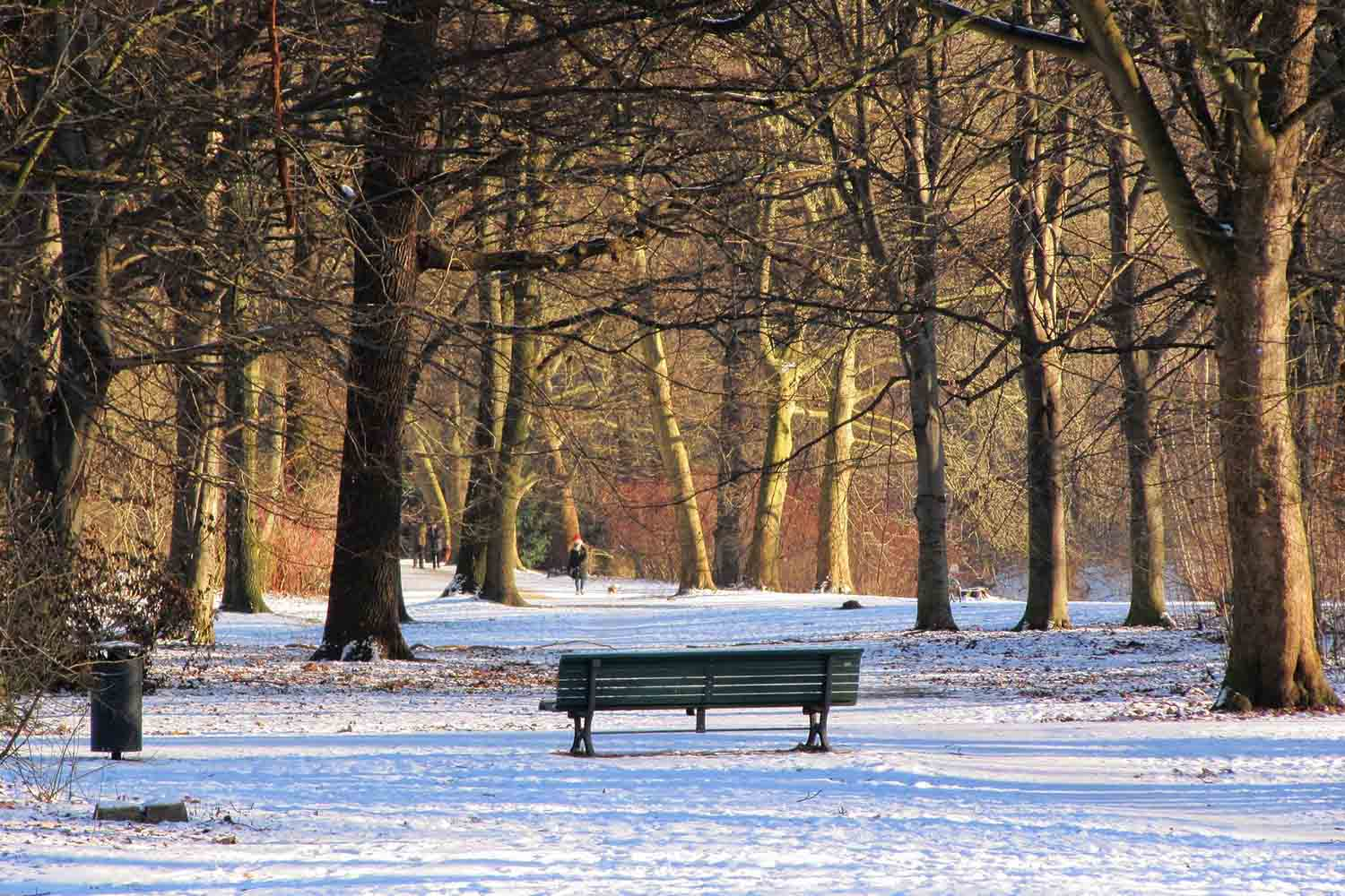 5 Things to do in Berlin in winter